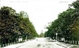 Lawrie Park Avenue, Sydenham